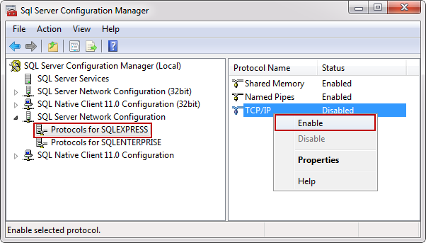 How to connect to a remote SQL Server