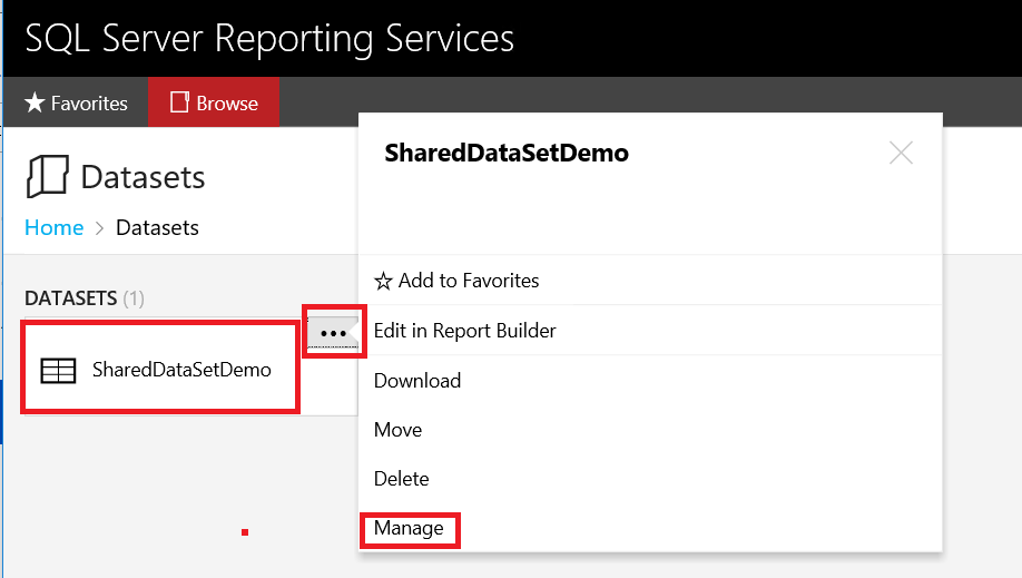 SQL Server Reporting Services (SSRS) Shared Dataset