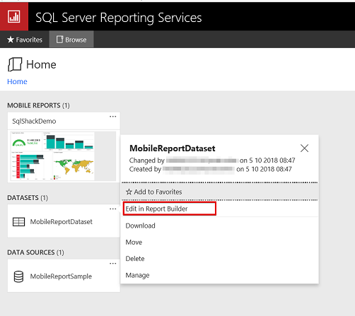 How to add parameters to SSRS mobile reports?