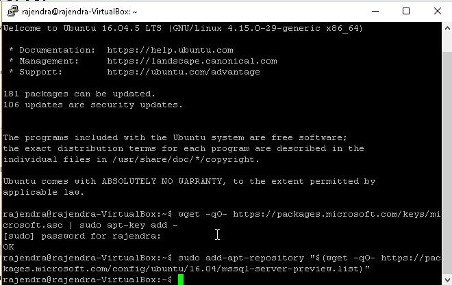 SQL Server 2019 installation on Ubuntu without a Docker