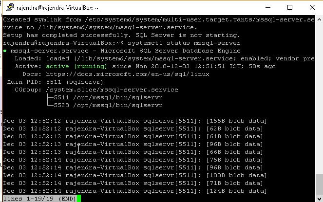 SQL Server 2019 installation on Ubuntu without a Docker