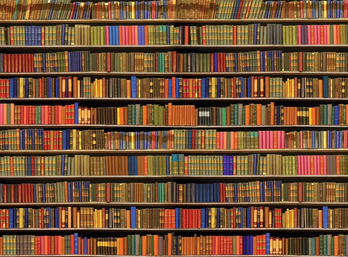 A full bookshelf representing a real-world analogy for indexes