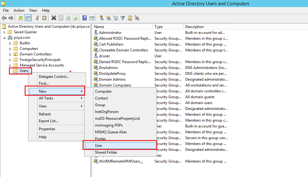 Active directory, new user
