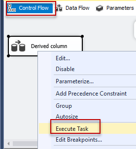 SSIS - Control flow - execute task