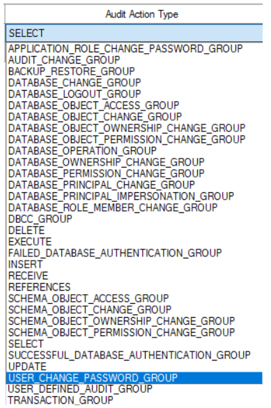 Database Audit Specification Actions and action groups