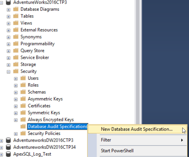 New Database Audit Specification