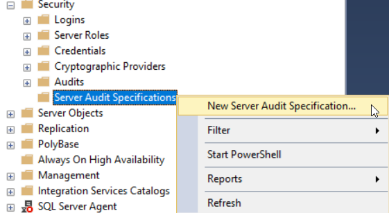 New Server Audit Specification