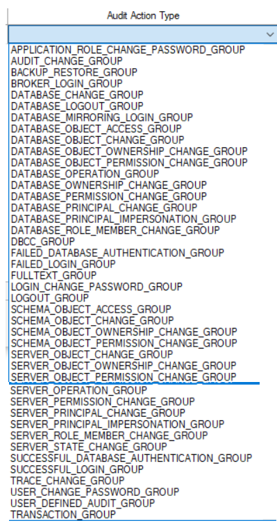 Server Audit Specification Action Groups
