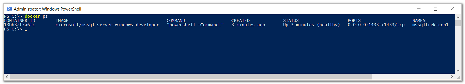 verify the status of docker container from powershell.
