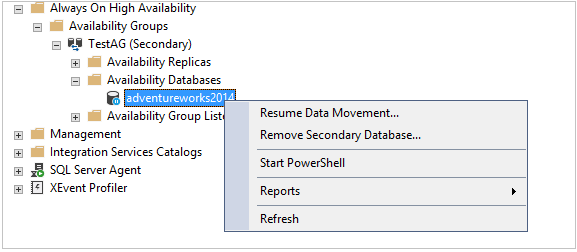 Resume Data Movement