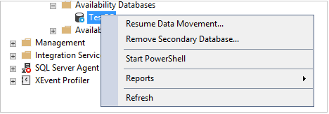Remove Secondary Database