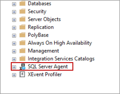 Agent XP enabled in SQL Server on new docker container