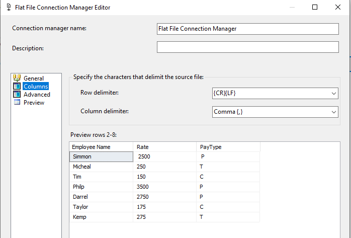 Data set view in the Flat Fiel connection Manager