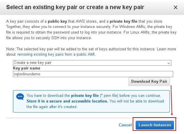 Download key and launch instance