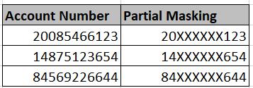 Partial Data Masking