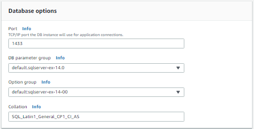 AWS RDS Database Options Pane