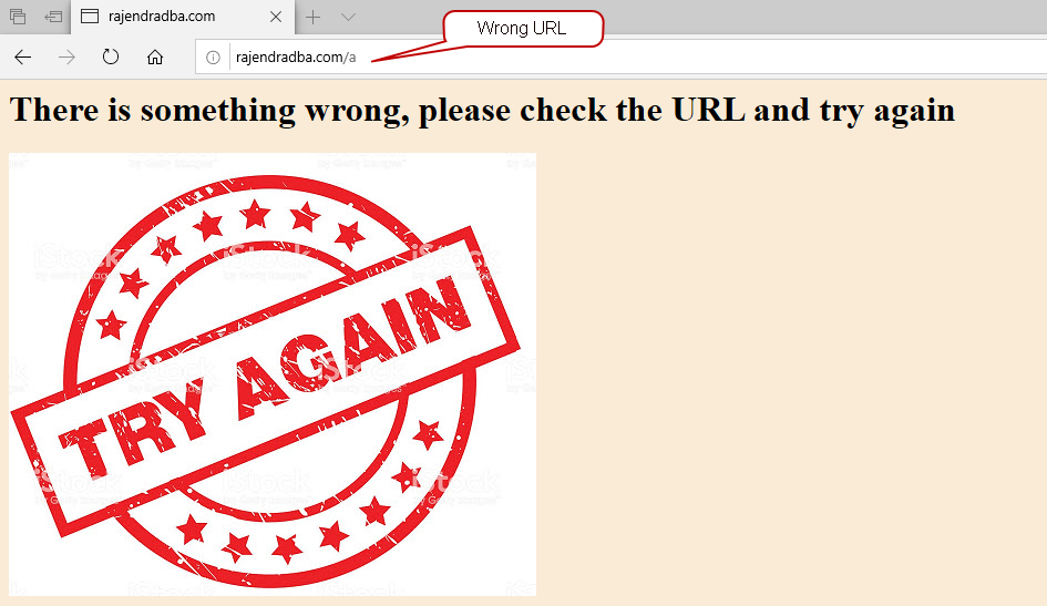 Wrong URL redirects to error page