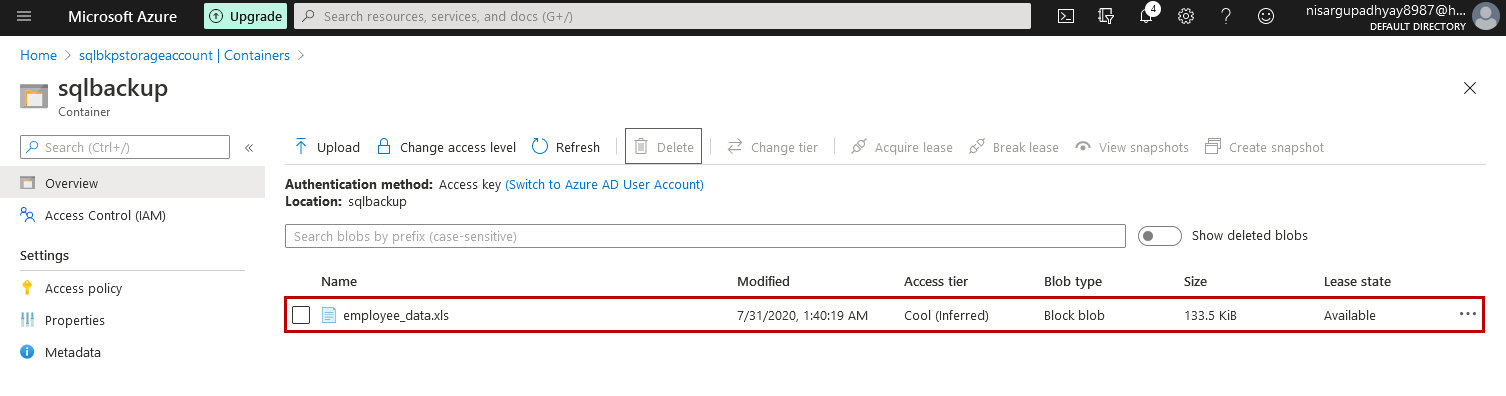 File uploaded to the Azure Blob storage container