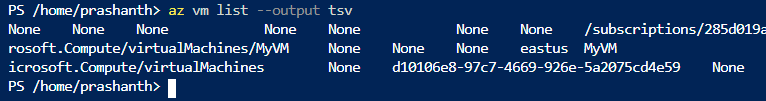 Get the VM list TSV format using Azure CLI commands